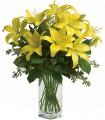 1 Florero de Vidrio, 8 Varas de Liliums / 2 Flores por Tallo