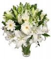 1 Florero de Vidrio, 10 Varas de Liliums/ 2 Flores por Tallo, 6 Gerberas