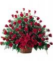 1 Canasta, 60 Rosas