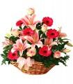 1 Canasta, 6 Rosas Rosadas, 6 Liliums Rosados, 6 Gerberas Rosadas