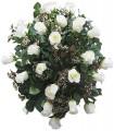 1 Cubre Urna, 25 Rosas