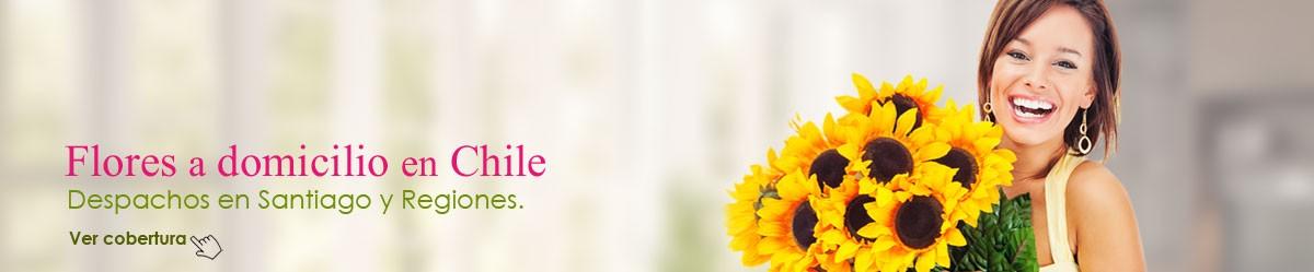 Comprar flores en línea es fácil con nuestras florerías en Chile